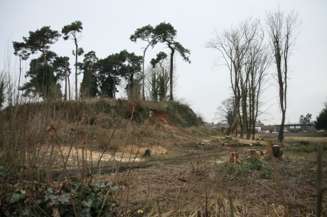 The Mount in Moat Lane, Towcester